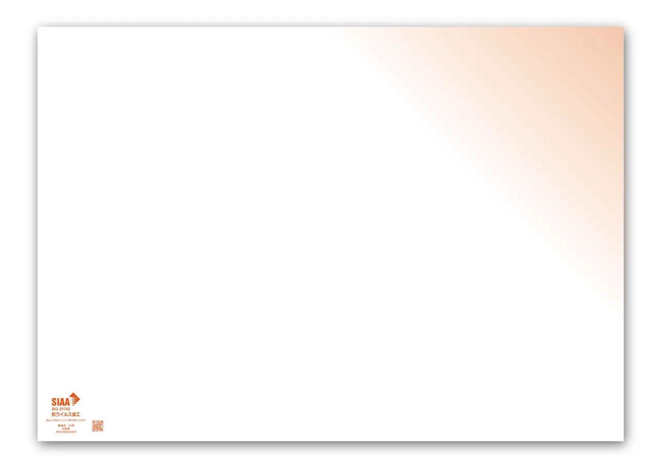 【抗ウィルス加工】ペーパーランチョンマット 橙